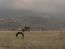 Iris Tyres Travels Through Algeria in Cinematic Ad
