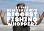FCB NZ Launches First Campaign for WWF