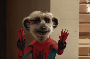 comparethemarket.com's Meerkats Get Behind the Mask in New Spider-Man Ad