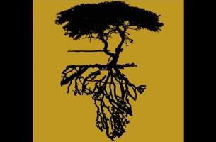 Friday Tunes: Roots Volume II