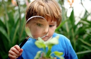 New World Promotes 'Little Garden' Offering in Latest Campaign