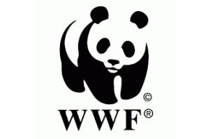 JWT London Wins WWF-UK Tiger Campaign