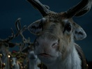 Taming Santa's Reindeer for McDonald's Magical Christmas Spot