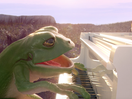 Frogs Sing a Message of Love to Brexit Britain