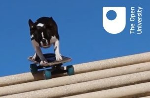 Dogs On Skateboards Help LIDA Recruit New Students for the Open University