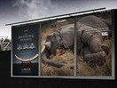 Stop Ivory's Shocking New Campaign by JWT London Aims to Enforce UK Ivory Ban