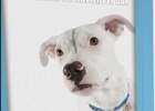 Shelter Pet Project Launches Social Paws Campaign to Raise Awareness on National Adopt A Shelter Pet Day