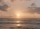 Fight for the Future of Oceans Is at the Heart of New Volvo Film for Sky Atlantic