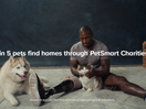 PetSmart Charities Continues to Help Animals Find Their Forever Homes with Touching New Spot