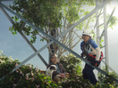 UScellular is Your Locally Grown Wireless in Campaign from Droga5 New York