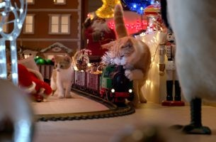 Cats Cause Christmas Chaos in adam&eveDDB's Festive Temptations Ad