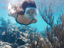 Dive into James Morgan's Underwater Spot for La Mer