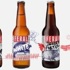 Cheers: A Nice Bit of Beer Branding