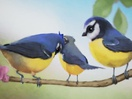Eir-Edel's Michael Csanyi-Wills Shows How 'Time Flies' with Composition for RSPB Ad