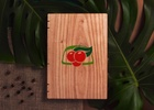 F/Nazca Saatchi & Saatchi Launches Handmade Book to Celebrate the Guarana Fruit