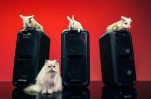 The New Sony Spot Features Some Real Party Animals