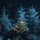 DDB Brussels And IKEA Show Us The Essence Of Christmas