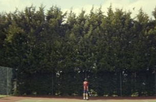 BBH Sport Hits it Out of the Court for First Lawn Tennis Association Campaign