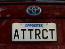 Saatchi & Saatchi NZ 'Owns It' With Comedic KiwiPlates TVC