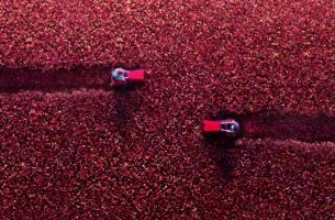 Durex Cuts the Cliché of Valentine's Day with Rose Fields & Explosions