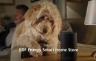 SALT.TV | Nick Collett | EDF Energy | Smart Home Store
