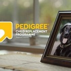 Colenso BBDO Takes Out US$10k Grand Prix Of The Year Award for Pedigree Child Replacement Programme at Ad Stars 2017