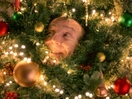 Smart Energy's Comedic Xmas Campaign Turns Focus on Fathers for Festive Funnies