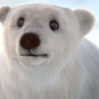 Polar Bear Reveals Its Sweeter Side in Milkana Cheese Lollipop Ad