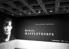 Clemenger BBDO, Sydney Partners With The Art Gallery of NSW for Robert Mapplethorpe Exhibition