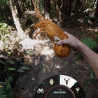 How Tourism NZ and TBWA Sydney Invited the World to an Open-World Gaming Experience on YouTube