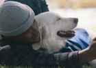 Allianz Supports Olympic Athletes' Mental Health with Support Dog Squad