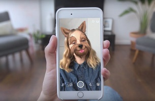BBDO NY Utilises Camera Filters to Boost Pet Adoption for Pedigree