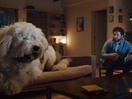 Meet Doug the (One-Ton) Dog in This Amusing Skoda Ad with a Big Message