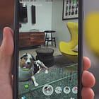 Pedigree Develops Dog-Lover Game Where You Can Play Fetch Across the Internet