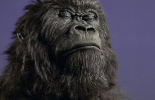My Most Immortal Ad: Mariana Peluffo on Cadbury's 'Gorilla'