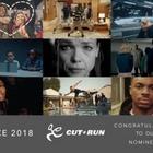 Cut+Run Shortlisted for 10 AICE Awards