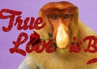 Ugly Animals Search for Love in Droga5's Valentine's Day Cards