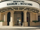 Magnum Releases the Beasts With Cara Delevingne & Moschino