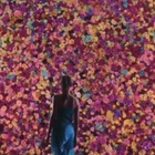 Director Luzian Schlatter Creates a Flower Wall for Stunning Sony Bravia Spot