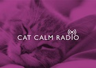 Whiskas Launches the First Ever Radio Station for Cats