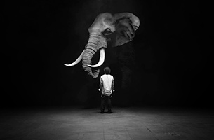 Found Studio Unveils Debut Short 'The Dog and The Elephant'