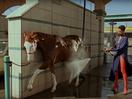 There's Plenty of Stylish Horsing Around in Yorgos Lanthimos' Gucci Film