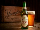 Laughlin Constable Named Creative Agency of Record for Yuengling