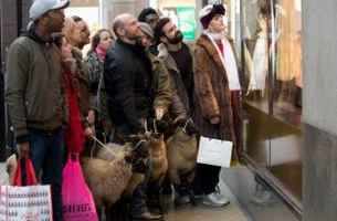 What the Flock are These Sheep Doing in London On Black Friday?