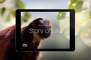 BBC Earth and AKQA Launch 'Story of Life' With Sir David Attenborough