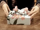 Salvation Army & Geometry Global Prague Introduce the World's Most Eco-friendly Gift Wrap