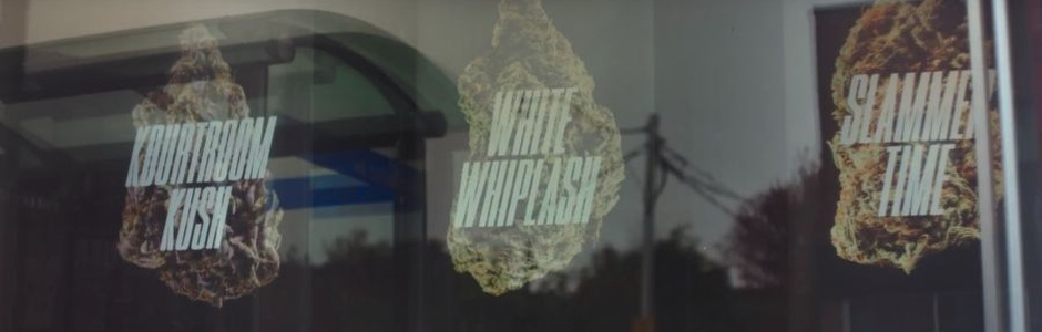 'Kourtroom Kush' and 'White Whiplash' Expose the Consequences of Driving High