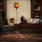 Ogilvy Brazil's Petz Campaign Reminds Us of Our Animal Friendships