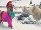TK Maxx's Charming Spot Sees Lil' Goat Struts Her Stuff in the Snow