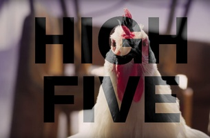 High Five: August 2017